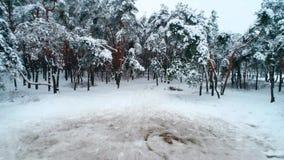 Вид с воздуха glade снега акции видеоматериалы