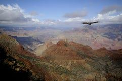 вид с птичьего полета Стоковая Фотография RF