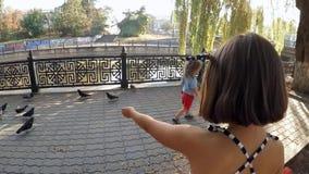 движение медленное Ребенок в голубях парка подавая сток-видео