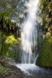 движение обоев водопада Стоковое Изображение
