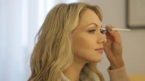 Визажист делает макияжем красивую девушку сток-видео