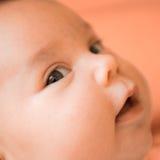 визирование младенца Стоковая Фотография