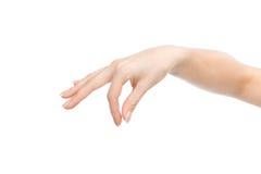 Визитная карточка знака владением руки женщины фактически Стоковая Фотография RF