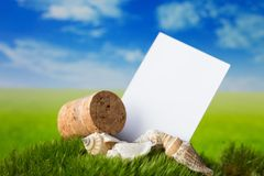 Визитная карточка на луге fress Стоковые Изображения