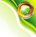 визитная карточка относящая к окружающей среде Стоковая Фотография
