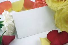 визитная карточка формируя розы рамки Стоковые Изображения RF