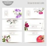 Визитные карточки с флористическими элементами Стоковые Изображения