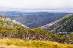 Викторианская высокогорная зона Виктория - высоты Hotham Стоковое фото RF