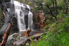 Викторианский водопад Стоковая Фотография