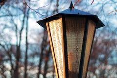 Викторианский уличный фонарь Стоковое Фото