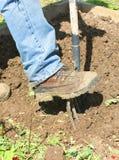 Вилка ботинка и сада Стоковое Изображение RF