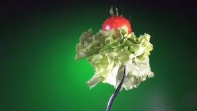 Вилка с свежим красным томатом в капельках и салате воды поворачивает зеленую предпосылку акции видеоматериалы