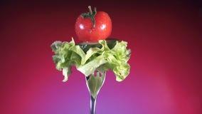 Вилка с свежим красным цветом отрезала томат и огурец в падениях и салате воды поворачивает красную предпосылку видеоматериал
