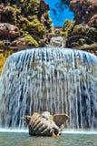 вилла овала фонтана este d Стоковая Фотография