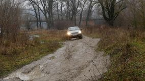 Виллис едет через грязь в древесинах сток-видео