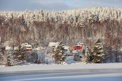 Виллы в малом шведском городке Ludvika, между лесом и Стоковое Фото
