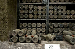 Вина собрания редкие в винодельне Massandra, Ялте, Крыме Стоковая Фотография RF