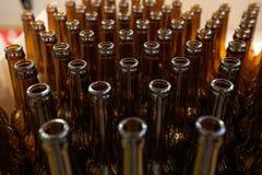 винзаводов Пустые стеклянные пивные бутылки, взгляд сверху Стоковое Изображение RF