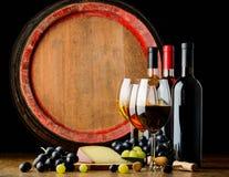 Винный погреб и вино Стоковая Фотография RF