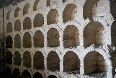 Винный погреб Стоковое Изображение RF