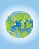 виноградина глобуса Стоковая Фотография RF