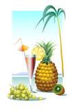 Виноградина и ананас Иллюстрация штока