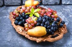 Виноградина и груша осени Стоковая Фотография