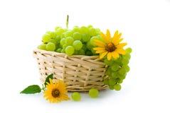 виноградина корзины стоковые изображения rf