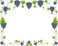 виноградина рамки иллюстрация штока