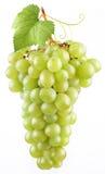 виноградина Стоковое Изображение