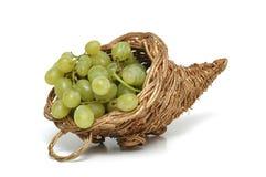 виноградина Стоковые Фотографии RF