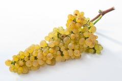 виноградины белые Стоковые Фото