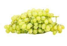 Виноградины ветви зеленые Стоковая Фотография