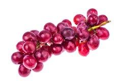 виноградины ветви красные Стоковое фото RF
