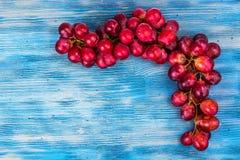 виноградины ветви красные Стоковое Изображение RF