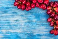 виноградины ветви красные Стоковые Изображения