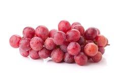 виноградины ветви свежие красные Стоковые Фото
