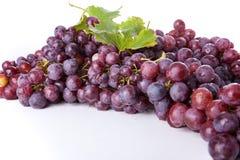 виноградины ветви Стоковое Фото