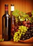 Виноградины вина жизнь все еще Стоковые Фотографии RF