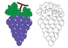 Виноградины Деятельность для детей дошкольного возраста иллюстрация графика расцветки книги цветастая иллюстрация штока