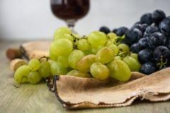 виноградины зрелые стоковое фото