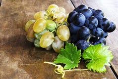 виноградины зрелые Стоковые Фото