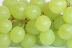 виноградины изолировали белизну стоковые изображения