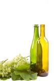 Виноградины и бутылки на белизне стоковое фото