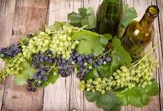 Виноградины и бутылки на деревянной планке стоковое фото rf