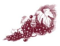 Виноградины и вино Стоковая Фотография