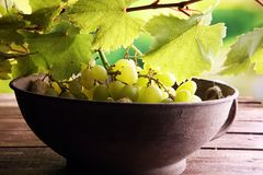 Виноградины на листьях деревянного стола и виноградины Здоровые виноградины вина свежих фруктов Стоковое Изображение
