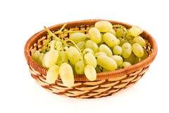 виноградины осени Стоковые Фотографии RF