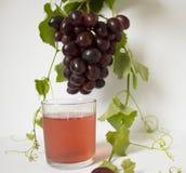 виноградины предпосылки белые Связка винограда Бутылка с соком Стоковые Изображения RF