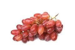 виноградины пука изолировали красный цвет Стоковая Фотография